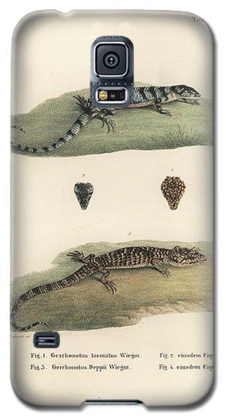 Alligator Lizards Galaxy S5 Case