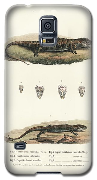 Alligator Lizards From Mexico Galaxy S5 Case