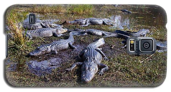 Alligators 280 Galaxy S5 Case