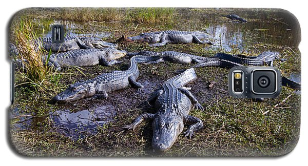 Alligators 280 Galaxy S5 Case