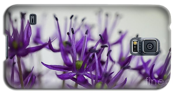 Allium Aflatunense Sideview Galaxy S5 Case
