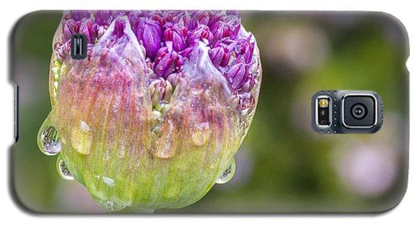 Allium Bud  Galaxy S5 Case