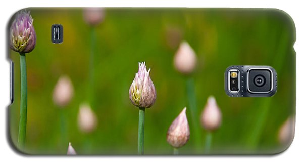 Galaxy S5 Case featuring the photograph Allium Plants by Monte Stevens