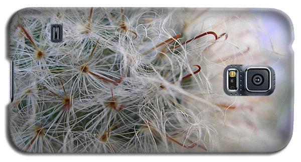 Galaxy S5 Case featuring the photograph Allium Sativum by Jolanta Anna Karolska