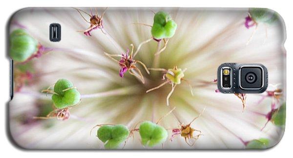 Allium Zoom Galaxy S5 Case