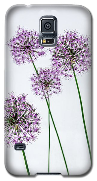 Alliums Standing Tall Galaxy S5 Case by Susan  McMenamin