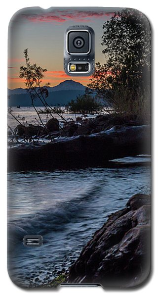 Almanor Driftwood Galaxy S5 Case