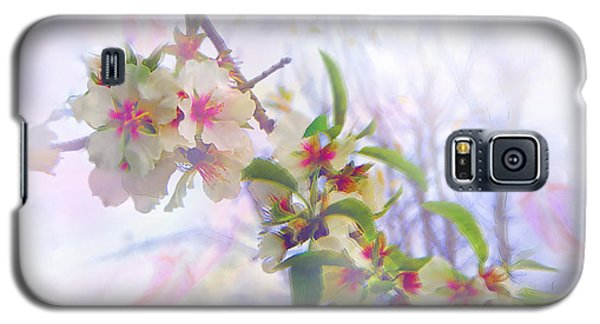Almond Blossoms Galaxy S5 Case