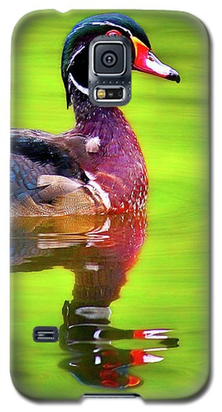 Galaxy S5 Case featuring the photograph Almost Perfect Wood Duck by Jean Noren