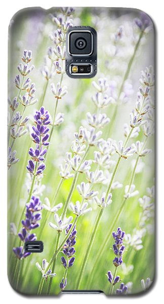 Almost Wild..... Galaxy S5 Case by Russell Styles