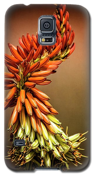 Galaxy S5 Case featuring the photograph Aloe Vera Twist  by Saija Lehtonen