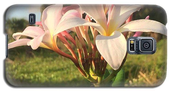 Aloha Galaxy S5 Case by LeeAnn Kendall