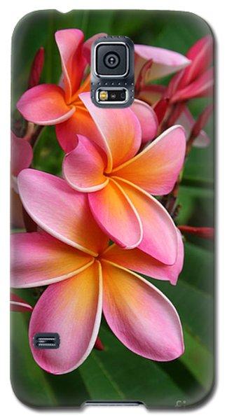 Aloha Lei Pua Melia Keanae Galaxy S5 Case