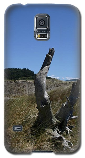 Galaxy S5 Case featuring the photograph Alone At Last by Marie Neder