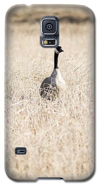 Alone In The Field Galaxy S5 Case