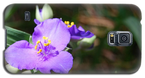 Galaxy S5 Case featuring the photograph Alone In The Garden by Linda Mesibov