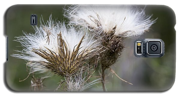 Galaxy S5 Case featuring the photograph Along The Meadow Trail by Andrew Pacheco