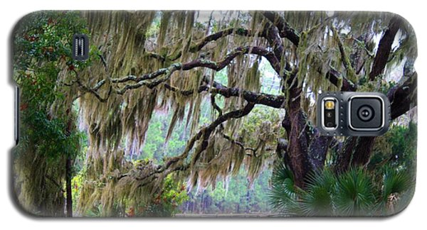 Galaxy S5 Case featuring the photograph Along The Path by Kathryn Meyer