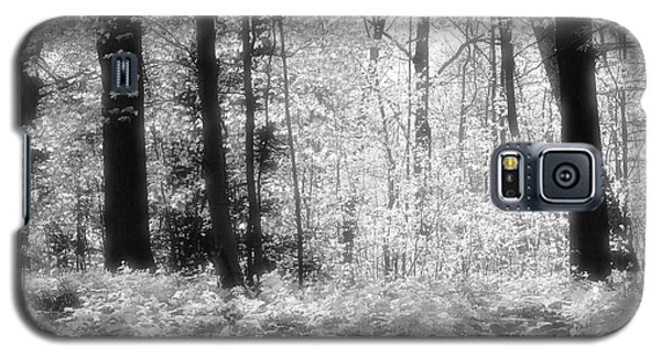 Along The Top Bw  Galaxy S5 Case by Lyle Crump