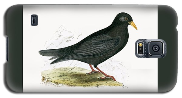 Alpine Chough Galaxy S5 Case