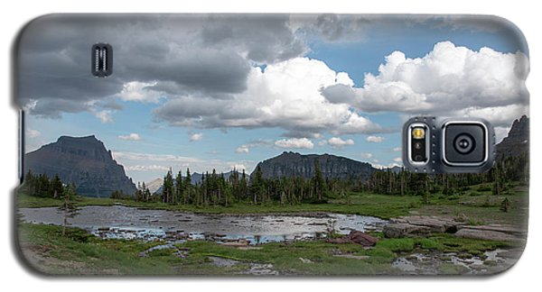 Alpine Oasis Galaxy S5 Case