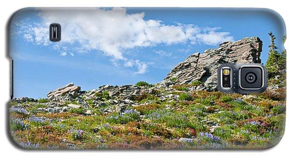 Galaxy S5 Case featuring the photograph Alpine Rock Garden by Jeff Goulden