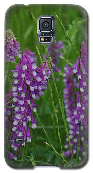 Alpine Vetch 1 Galaxy S5 Case