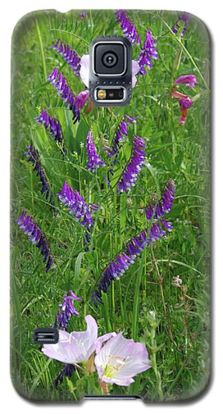 Alpine Vetch And Primroses Galaxy S5 Case by Robyn Stacey