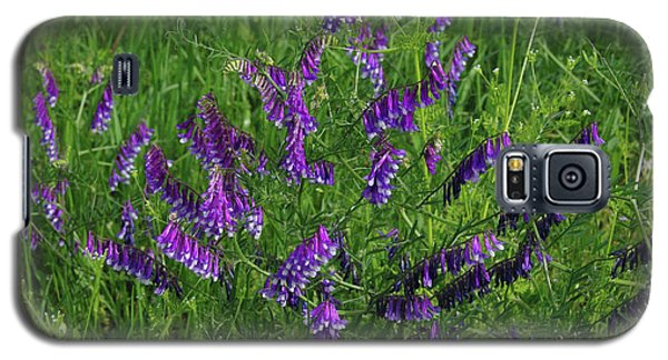 Galaxy S5 Case featuring the photograph Alpine Vetch by Robyn Stacey