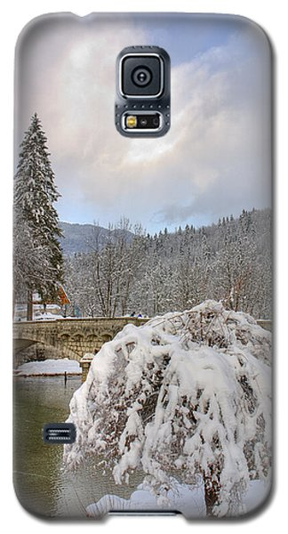 Alpine Winter Beauty Galaxy S5 Case by Ian Middleton