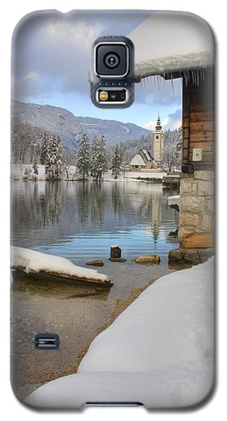 Alpine Winter Clarity Galaxy S5 Case by Ian Middleton