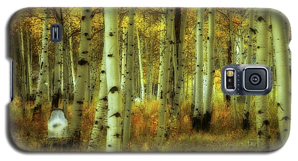 Galaxy S5 Case featuring the photograph Alvarado Autumn 1 by Marie Leslie