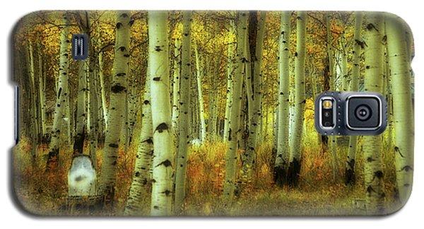 Alvarado Autumn 1 Galaxy S5 Case