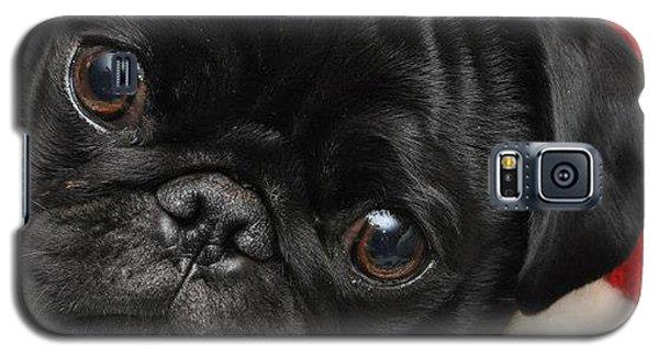 Alvin Galaxy S5 Case