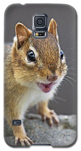 Alvinnn... Galaxy S5 Case