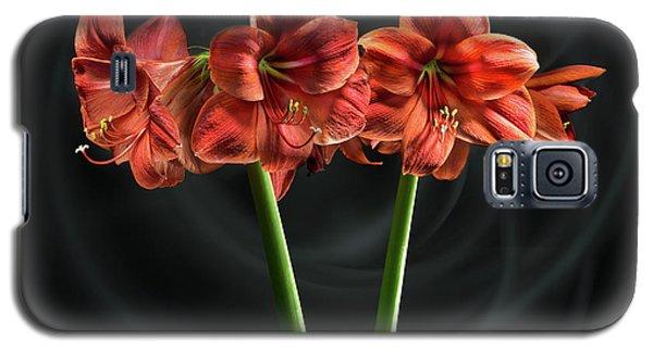 Amarilis Galaxy S5 Case