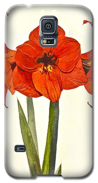 Amaryllis- Posthumously Presented Paintings Of Sachi Spohn  Galaxy S5 Case
