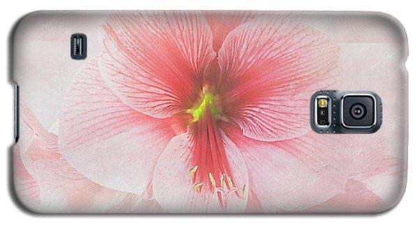 Amaryllis 'purple Rain' II Galaxy S5 Case