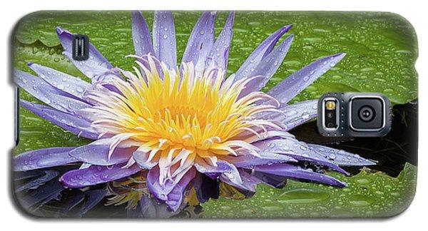 Amazing Beauty Galaxy S5 Case