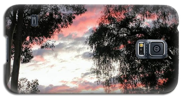 Amazing Clouds Black Trees Galaxy S5 Case