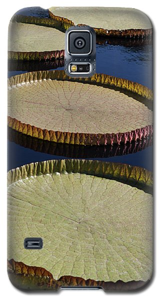 Galaxy S5 Case featuring the photograph Amazonas Lily Pads II by Suzanne Gaff
