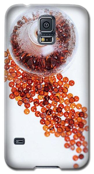 Amber #0664 Galaxy S5 Case