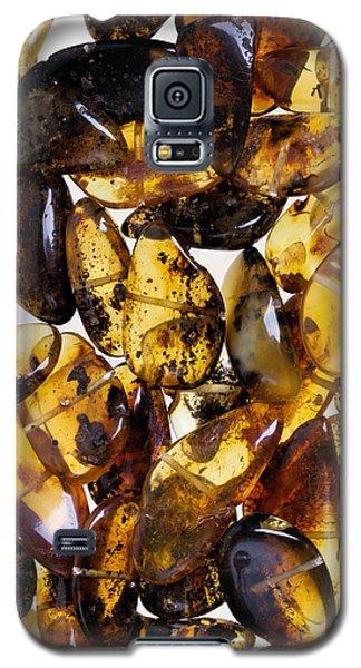 Amber #7993 Galaxy S5 Case