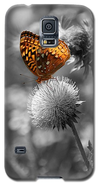 Amber Butterfly Colorized Galaxy S5 Case