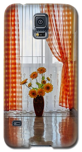 Amber View Galaxy S5 Case