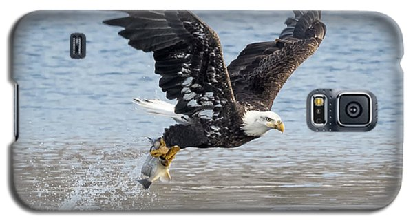 American Bald Eagle Taking Off Galaxy S5 Case by Ricky L Jones