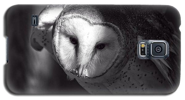American Barn Owl Monochrome Galaxy S5 Case