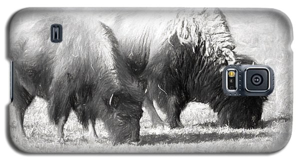 American Bison In Charcoal Galaxy S5 Case by Linda Phelps