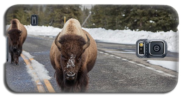Galaxy S5 Case featuring the photograph American Bison In Yellowstone National Park by Carol M Highsmith