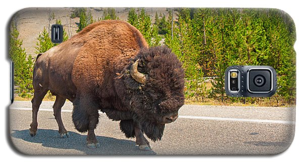 Galaxy S5 Case featuring the photograph American Bison Sharing The Road In Yellowstone by John M Bailey